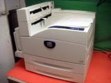 Xerox Phaser 5500 5500DN Tabloid duplex 50ppm Net Printer